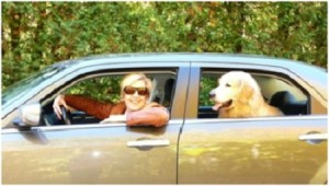 Nancy and her dog, Blue, in a car