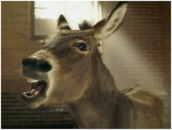 A still of the Budweiser Donkey - he wants to be a clydesdale