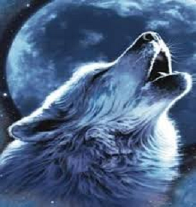 a wolf howling with the full moon in the background referencing The Lunar Lunacy Effect